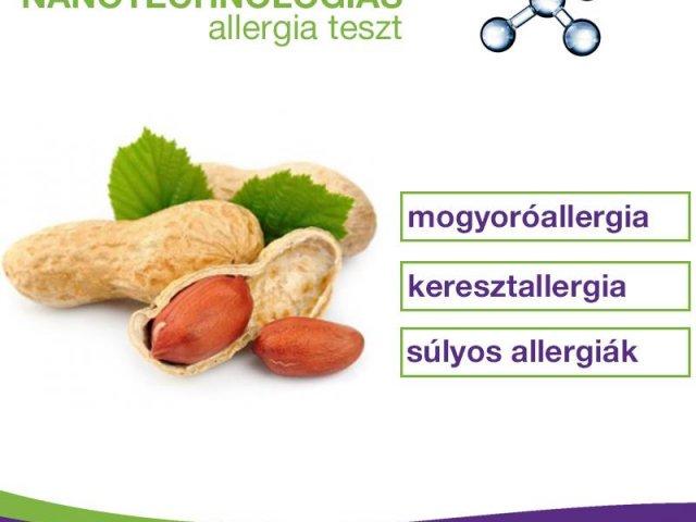 Mogyoróallergia: súlyos? kereszt? - tudd meg egy vérvétellel!